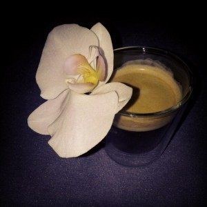 orchideekoffie