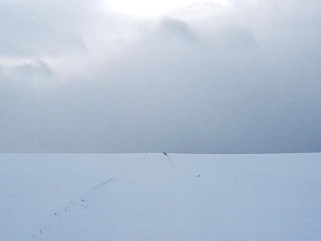 Geen weg meer te zien. Dan maar rechtdoor lopen naar de horizon.