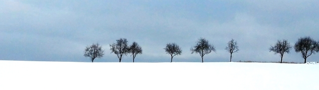 Sneeuw9