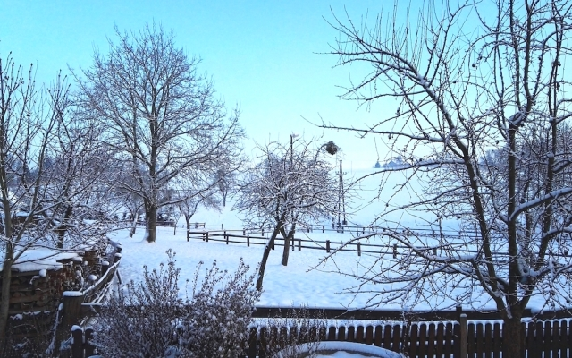 Sneeuw13